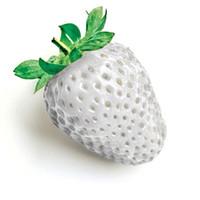ingrosso piante del cortile-50 pezzi un sacco di semi di fragole fresche bianche piantare un cortile giardino e frutta verde e semi di fragola Begetables
