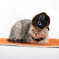 ropa de abrigo mágico al por mayor-Ropa Mágica de Halloween para Mago Ropa para Mascotas Traje Gato Perro Regalo de Navidad Capa Mascota Gatos Perros Ropa Abrigo con Sombrero