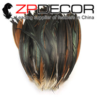 Wholesale natural dyed feather - ZPDECOR 30-35cm(12-14inch) Part Dyed Natural Brown High Quality Cheap Long Rooster Tail Feathers for Burlesque Fancy Dress Party