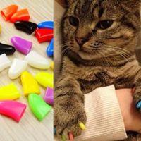 ongle de plancher achat en gros de-20sets / lot soft Cat Grooming Finger Caps Pet Dog Cat Cat Nail caps contrôle de la griffe protégeant le sol