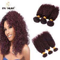 Wholesale Curly Dye Colors - Fashijia burgundy brazilian kinky curly virgin hair 3pcs brazilian hair weave bundles 99j dark wine red afro kinky human hair extension