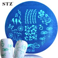 Wholesale Nail Art Disk - Wholesale- 1PCS Blooming Flower Bird Stencils DIY Disk Nail Art Stamping Plates Templates Manicure Accessory STZ30