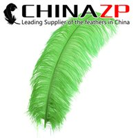 ostrich drab feathers - Gold Manufacturer CHINAZP Factory Size inch cm Selected Quality Dyed Lime Green Ostrich Drab Feathers