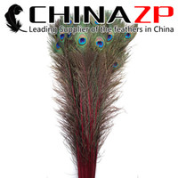 Wholesale Natural Peacock Tail Feathers - NO.1 Supplier CHINAZP 90~100cm(30~36inch) 50Pcs lot Excellent Quality Natural Dyed Colorful Peacock Tail Feathers for Party