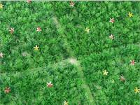 ingrosso erba di prato di plastica-25X25 CM Artificiale di plastica in legno di bosso topiaria albero Erba Prato per la casa giardino decorazione di cerimonia nuziale spedizione gratuita