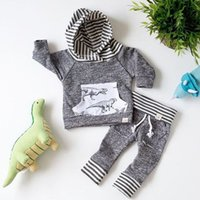 Wholesale toddler girl pant suits - 2017 Baby Clothing Sets Cartoon Dinosaur Boys Girls Toddler Hoodies Tops Pants 2Pcs Set Spring Autumn Cotton Infant Boutique Clothes Suits