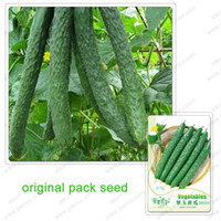 Wholesale 25 Seeds Pack Cucumber seeds jade cucumber garden plants potted organic fruit and vegetable seeds