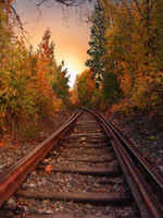 Wholesale Outdoor Photography Backdrops - Railway Photography Background Countryside Autumn Scenery Forest Trees Outdoor Nature View Fall Scenic Photo Backdrops for Studio