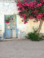 Wholesale Outdoor Photography Backdrops - Blue Painted Old Door Photography Studio Backgrounds Broken Wall Pink Flowers Tree Outdoor Kids Children Photo Shoot Backdrop Brick Floor