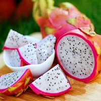 Wholesale Garden Dragons - 50 PCS pitaya seeds, white dragon fruit seeds (pitaya Pitahaya strawberry pear) bonsai garden fruit easy to grow plants
