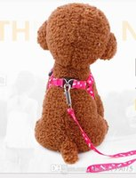 Top Fashion Oferta Especial Anytime Large Leashes Cachorros de Nylon Dog Collar Chien Best Selling Dog Leash Harness E Colar para Segurança