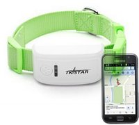 Wholesale dog gps track - TKSTAR Dog Cat pet GPS Tracker collar Waterproof real time tracking latest release AT