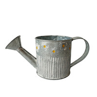 Wholesale Garden Vintage Antiques - Free shipping Watering Can POT Garden Bucket tin box Iron pots Fower pot Garden Ware Jug vintage antique water cans for flowers