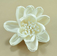 Wholesale Dried Lily Flower - Natural diffuser flower&handmade dry flower Decoration Dried Flower for diffuser Sola flower Water lily with pistill