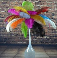 """Wholesale Large Ostrich Plumes - NEW New Arrival 55-60 CM  22-24"""" Large Ostrich Feather Plume DIY Craft For Christmas Wedding Party Table Decoration AA Grade MYY"""