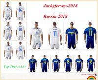 Wholesale Bosnia Herzegovina - 17 18 Top Bosnia and Herzegovina Soccer Jersey 11 Dzeko 10 Pjanic 9 Ibisevic 24 Zec 20 Hajrovic 18 Djuric 14 Susic Football Shirt Men Kit