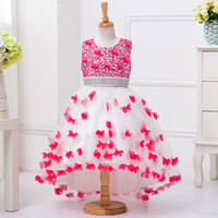 Wholesale Skirt Children Princess - Girls Dresses Butterfly Lace Princess Dress High Quality Tutu Skirt Costume Clothes 3-11Y Children Kids Clothing