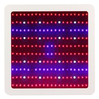 Wholesale Led Greenhouse Grow Lights - Full Spectrum 1000w 1200W 1600W 2000W LED Grow Light Double Chip Led Plant Lamp Indoor greenhouse growing garden flowering hydroponic lights