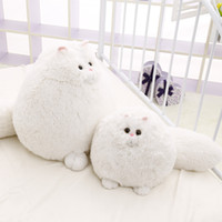 Wholesale Dog Toy Pillow - 30cm White Fat Persian Cat Plush Toys Kids Soft Cat Stuffed Pillow Plush Toys Cute Simulation Animal Doll Peluches Birthday Gifts Children