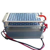 ingrosso ceramica di ozono generatore-10g Ozonizzatore Long Life Ceramic Plate Generatore di Ozono 110/220 V Efficace Ozonizzatore Deodorante Per Pet House + Spedizione Gratuita