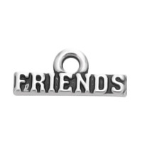 Vintage Style Antique Silver Plated Friends Word Amitié Charms pour Jewelry Findkings