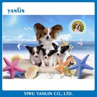 20 Pieces Lot 5 Designs 2017 New Arrival High Quality 3d Lenticular Picture Home Decor Animal Designs In Bulk Price