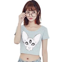 Wholesale Cat Crop Top - women's t shirt Harajuku Brand new women tops punk sphynx cat print tees canadian hairless cat element printed crop tops NV44-R3