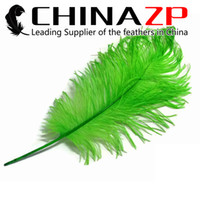 Wholesale Party Goods Manufacturers - Gold Manufacturer CHINAZP Factory 50-55cm(20-22inch) Length Selected Good Quality Dyed Green Decorative Ostrich Drab Feathers