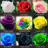 красные садовые цветы оптовых-Бесплатная доставка красочные Радуга Роза семена фиолетовый красный черный белый розовый желтый зеленый синий Роза семена растений / сад красивый цветок семена