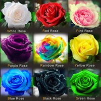 Wholesale Silk Wedding Bouquet Lilies - Free-Shipping Colourful Rainbow Rose Seeds Purple Red Black White Pink Yellow Green Blue Rose Seeds Plant Garden Beautiful Flower seeds