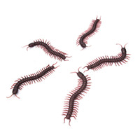 Wholesale Insect Toys Bug - Wholesale- Wholesales Practical Gags Jokes Horror Halloween Props Tricks Simulation Centipede Model Fake Insect Bug Toy 5pcs lot