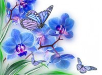 Wholesale Orchid Paintings Canvas - Diamond mosaic full square diamond embroidery needlework flower Moth orchid diy diamond painting cross stitch kits Mosaic Home Decor zf0066