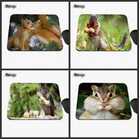 squirrel peanut - Mairuige professional printing custom lovely squirrel and peanuts character pattern laptop rubber game mouse pad is suitable for gift