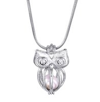 18KGP Pearl Cage Pendentifs Owl With Crystal Pearl Perles gemmes Cage Lockets Pendentifs, Wish Pearl Pendentif Montres pour DIY Collier Bijoux