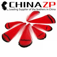Wholesale Wedding Pheasant Feathers - Leading Supplier CHINAZP 1~4inch 100Pcs lot Top Quality Unique Dyed Multicolor Lady Amherst Pheasant Tippet Feathers