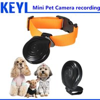 Wholesale Dog Collar Recorder - Wholesale-spy mini camera Pet Cam Camera Collar Video Recorder Monitor Suitable New Overvalue Top Quality DigitalFor Dogs Cats Puppy