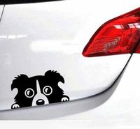 Wholesale Wallpaper Border Wholesalers - Wholesale price car stickers Pet Dog Border Collie sticker Dog Border Collie reflective sticker self adhesive vinyl wallpaper bumper sticker
