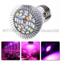 Wholesale E14 Plant - NEW 28W E27 GU10 E14 Led Grow Bulb Light 28 LEDs SMD 5730 LED Grow Light Hydroponic Plant Full Spectrum Lamp AC 85-265V MYY