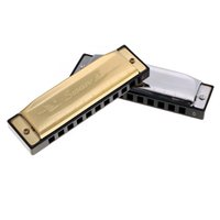 Wholesale Wholesale Instrument Cases - Wholesale-Swan Diatonic 10 Holes Blues Key of G Reed Harmonica Instrument with Case Golden Instrument Harmonica Blues Mouth Organ