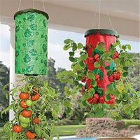 Wholesale Wholesale Plastic Hanging Flower Pots - Upside Down Air Plants Tomato Planter Upsides Down Hanging Round Planter System For Raw Fruit And Vegetables And Flower