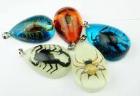 Wholesale Spider Lucite - FREE SHIPPING 12 PCS Black Gold Scorpion Spider Pendant Trendy Fashion yqtdmy jewelry