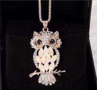 Wholesale Female Alloy Owl - South Korean high-end female owl cat long necklace pendant accessories
