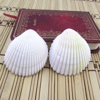 Wholesale Bag Gemstones - Shell Savageness Conch Wind Chime Parts Scallop Slices Cowry Wall Stickers Room Ornament Sea Shells Direct Deal 0 5zc C