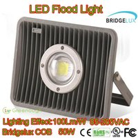 Wholesale Wholesale Led Heavy Duty Lighting - Heavy Duty LED Flood light Waterproof Fishing Lights Dock Light Outdoor Scurity Floodlights 85-265VAC LED Landscape Lamp 100lm w 30W 50W 70W