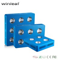 Wholesale WinLeaf Dominator W W W W COB LED Grow Light Full Spectrum for Vegetable Hydroponics Greenhouse Plant grow and bloom