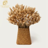Wholesale Grass Film - 100pcs lot Decorative Flowers Bouquet Rabbit Tail Grass Natural Dried Flowers for Retro Nostalgia Filming Props FREE SHIPPING
