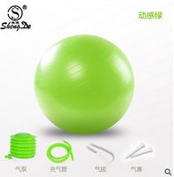 Wholesale Fitness Modelling - Wholesale-65 cm explosion-proof frosted yoga ball sports fitness multiple color yoga fitness model perfect image