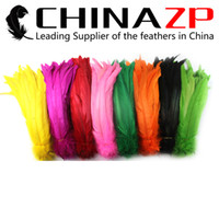 Wholesale Led Lights Bulk - Leading Suppliers CHINAZP 25~30cm(10inch~12inch) 100Pcs lot Top Quality Multicolor Rooster Tail Feather Dyed Bulk for sale