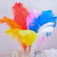 tissus de plumes achat en gros de-Plume d'autruche teint doux multi couleur plume vêtements tissu couture plumes pour la décoration de noce bureau accessoires 0 4hx FB