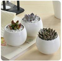 yeni saksılar toptan satış-Yeni succulents tencere Dekoratif moda Basit beyaz mini çiçek saksıları yetiştiricilerinin etli bitki masa üzerinde saksı ev dekorasyon toptan